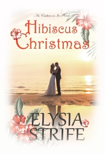 Hibiscus Christmas ebook